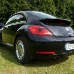 coccinelle new beetle