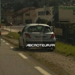 Peugeot 207 radar mobile bx 043 cr dep 74