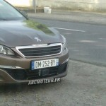 Peugeot 308 radar mobile mobile DM 252 BY dep 72